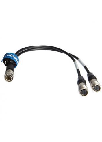 Chrosziel - Cable MagNun en Y para mandos Canon MN-FZ-CA