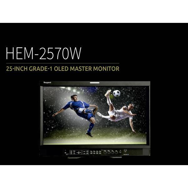 Ikegami HEM-2570W