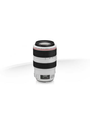 Canon - EF 70-300 4-5.6 L IS USM